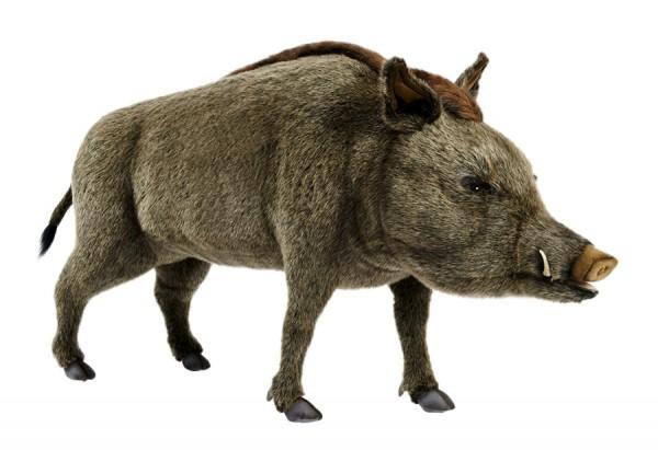 Hansa 4334 Wildschwein 140 cm