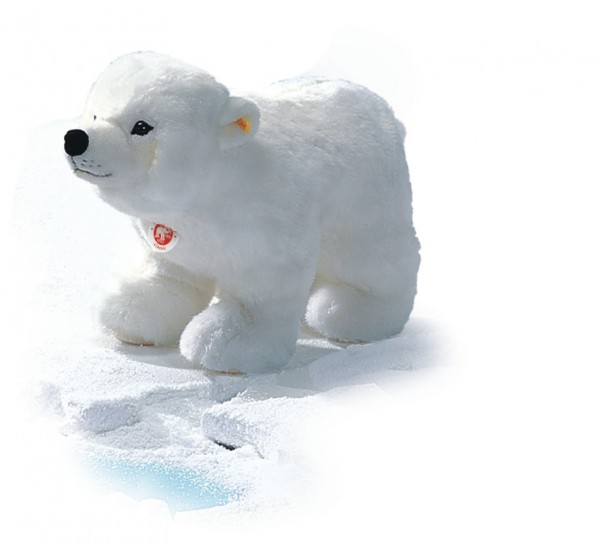 Steiff 501586 Studio Baby Eisbär 65 cm Webpelz Teddybär