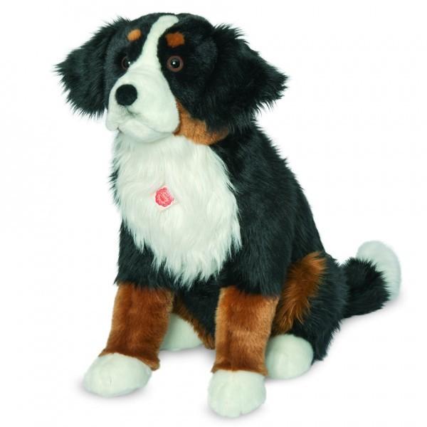 Teddy Hermann 927945 Berner Sennenhund sitzend 60 cm